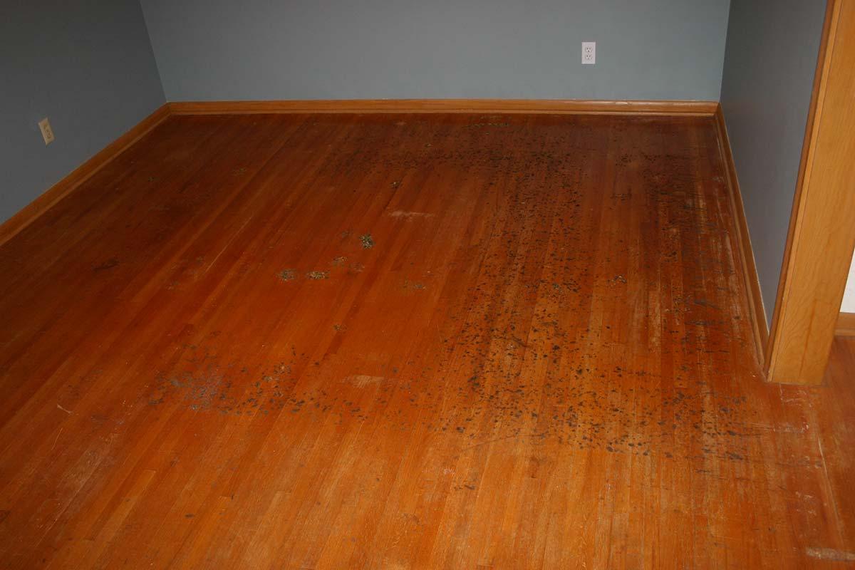 Before restoration of hardwood flooring in bedroom